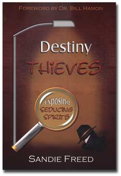 destiny of thieves